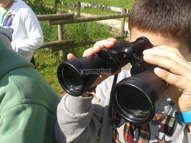 Mirando por los prismaticos