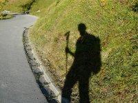 Peregrinos por el camino