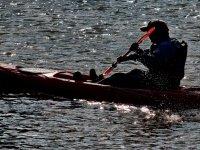 在日落时划桨