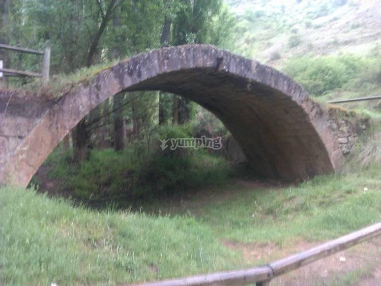 Puente en el camino
