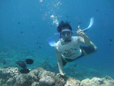 Iniciación snorkel en el Pecio de la Mezquitilla