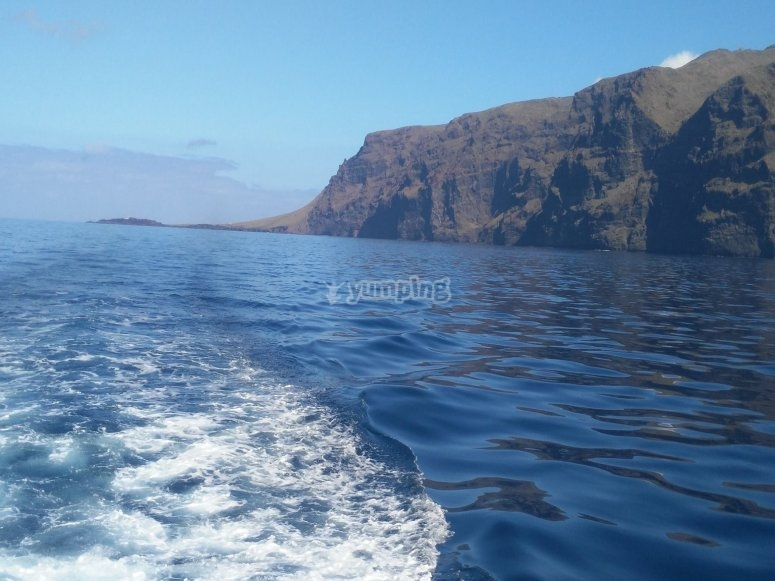 Outing to see cetaceans