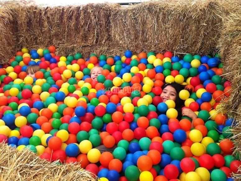 En la piscina de bolas