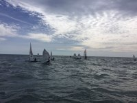 Conjunto de veleros navegando