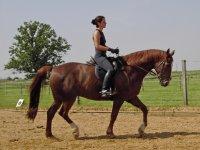 montando a caballo en la arena