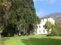 Campamento urbano bilingüe en Oviedo 3 días