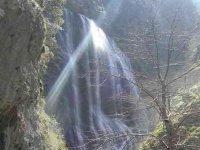 Tirolina en medio de la naturaleza