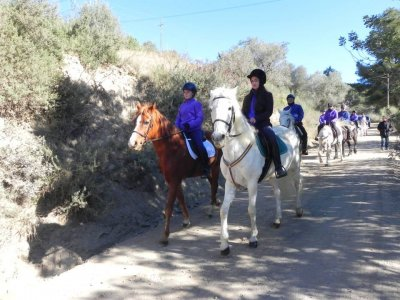 Horseback route with drink in Collserola 1 hour