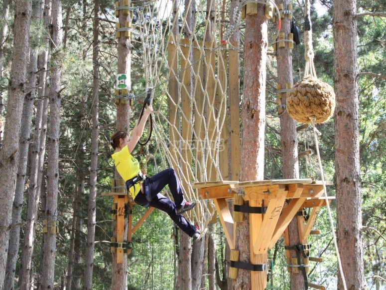 在垂直森林中的活动
