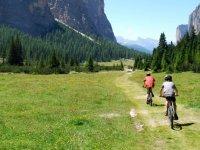 骑着自行车进入森林