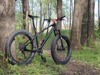 树林中的山地自行车