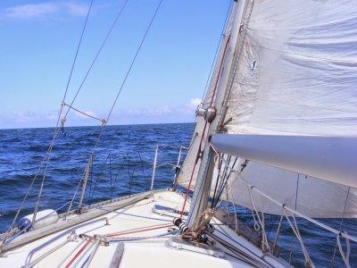 Paseo en barco en bahía de Cádiz media jornada
