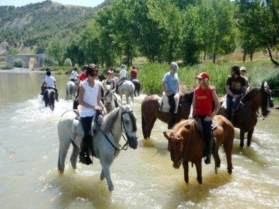 2h horse riding trip in Canal de Castilla + lunch