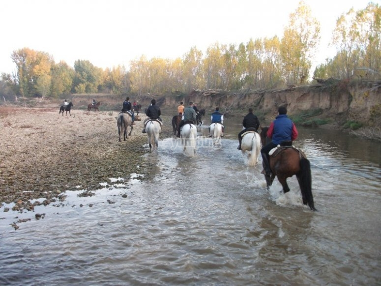 Horse riding trip along the Pisuerga river