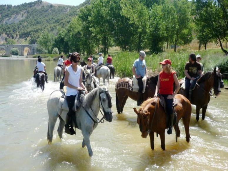 Join our horse riding trip