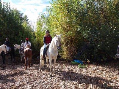 Paseo en caballo por el Pisuerga + menú del día