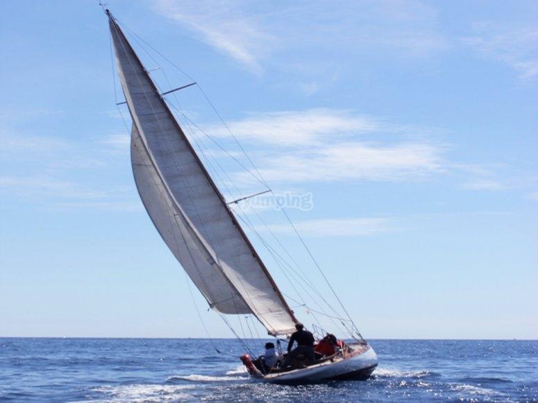 Noleggio di barche a vela