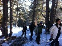 Uscire con le racchette da neve