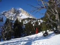 向下滑动雪景