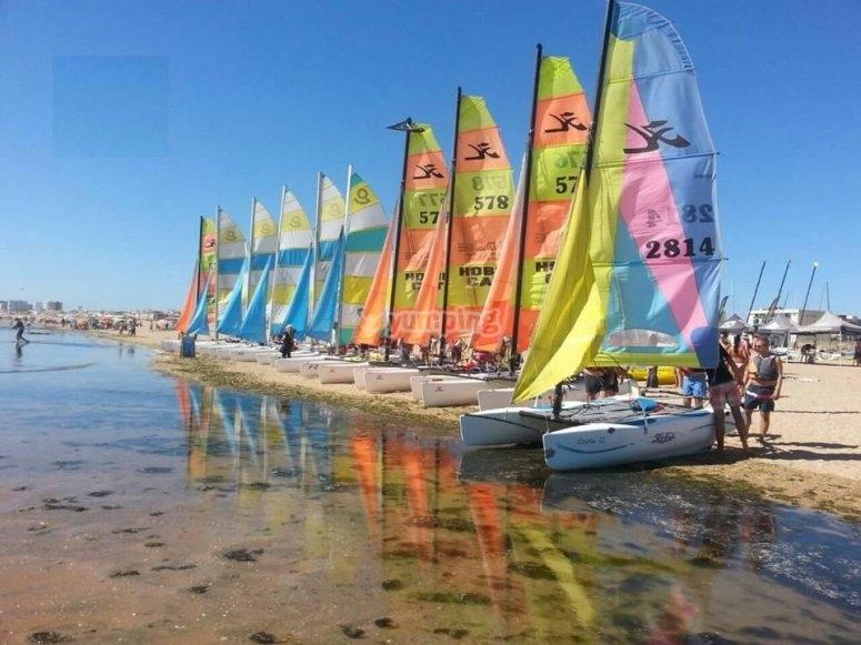 Catamaranes en el agua