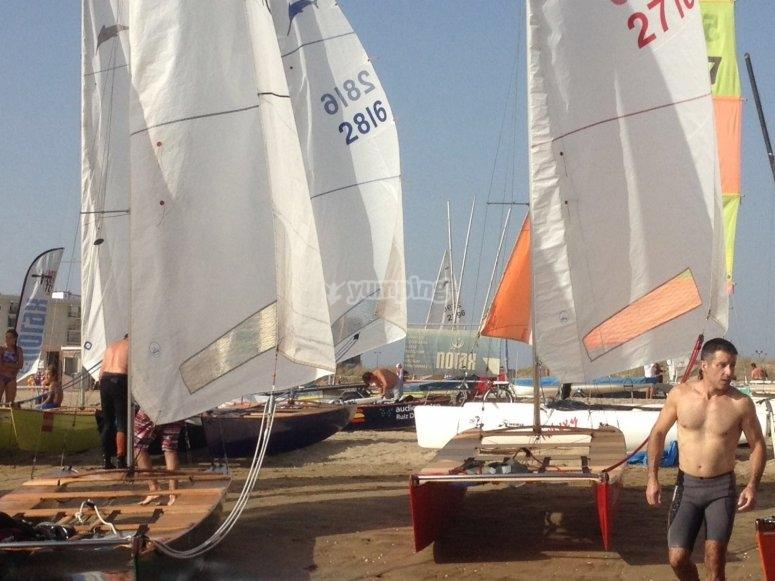 Grupo de catamaranes