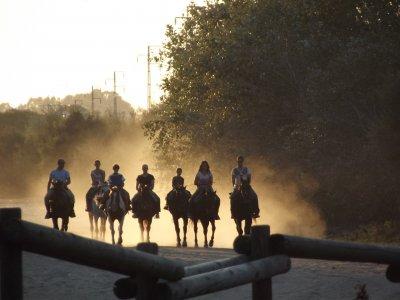 Ruta a caballo en Doñana y paseo en carro 2 horas