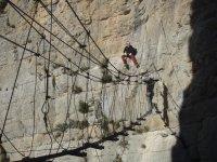 Puente de cables