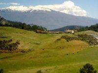 Pantaneto景观