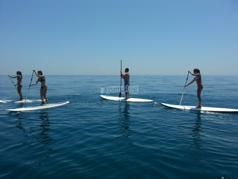 The SUP equipment is ready for you to have it