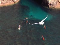 View of a kayak ride from above