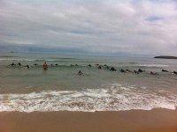 grupo de chicos entrando al agua en sus tablas de surf