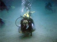 Professional diving