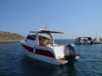 在Santa Pola 10h租船Mira Ria 800