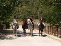 Llegando a casa con los caballos