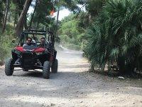 树林中的两人越野车