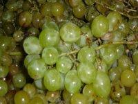 racimo de uvas verdes