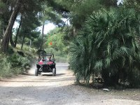 buggy_tours_alcudia_16