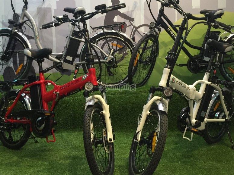 Electric bicycles rental