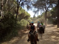 On horseback among the pine forests of Doñana