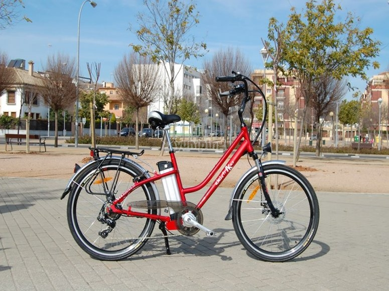 Bici eléctrica en el parque