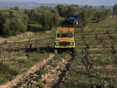 Tour safari 4x4 del Penedès e corso di degustazione