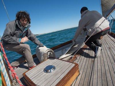 Skipper certicate in Castelldefels