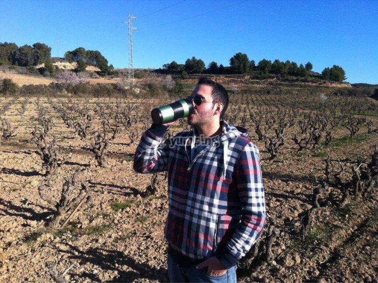 Probando el vino