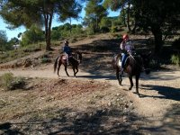 Horseback riding through the Valencian forest