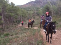Going up the trail with the horses