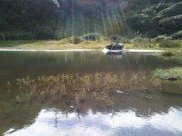 将水推车放在水上