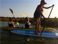 Alquilar material de paddle surf en El Portil 3h