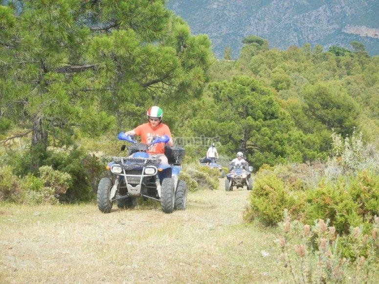 Saliendo del bosque en quad