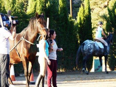 Buenavista Horseclub