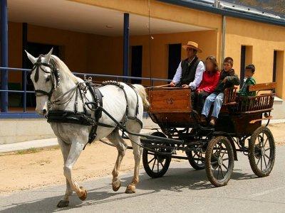 Paseo en coche de caballos en Ortigosa del Monte